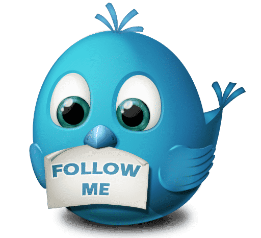Guide to getting twitter followers
