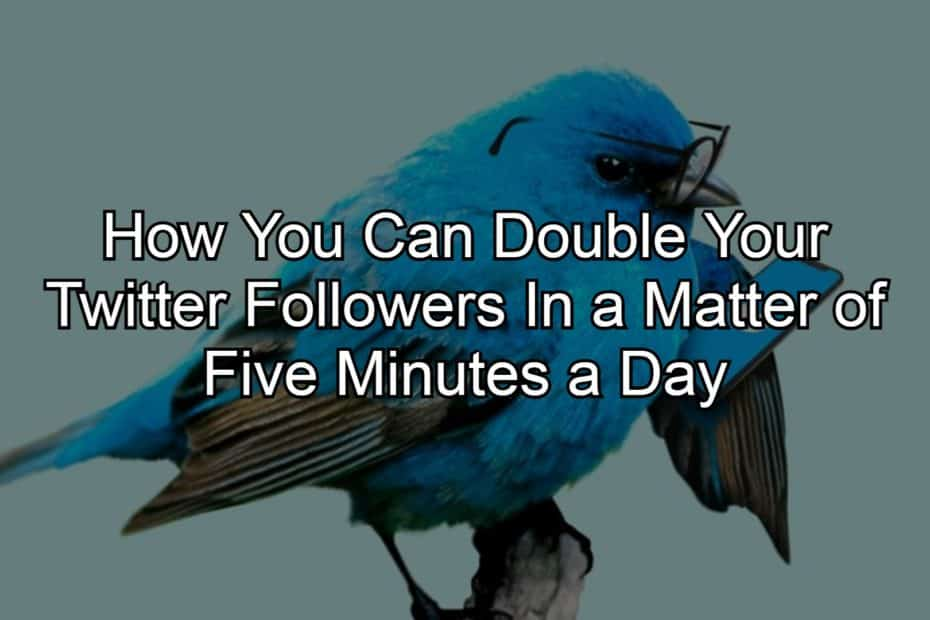 How You Can Double Your Twitter Followers In a Matter of Five Minutes a Day