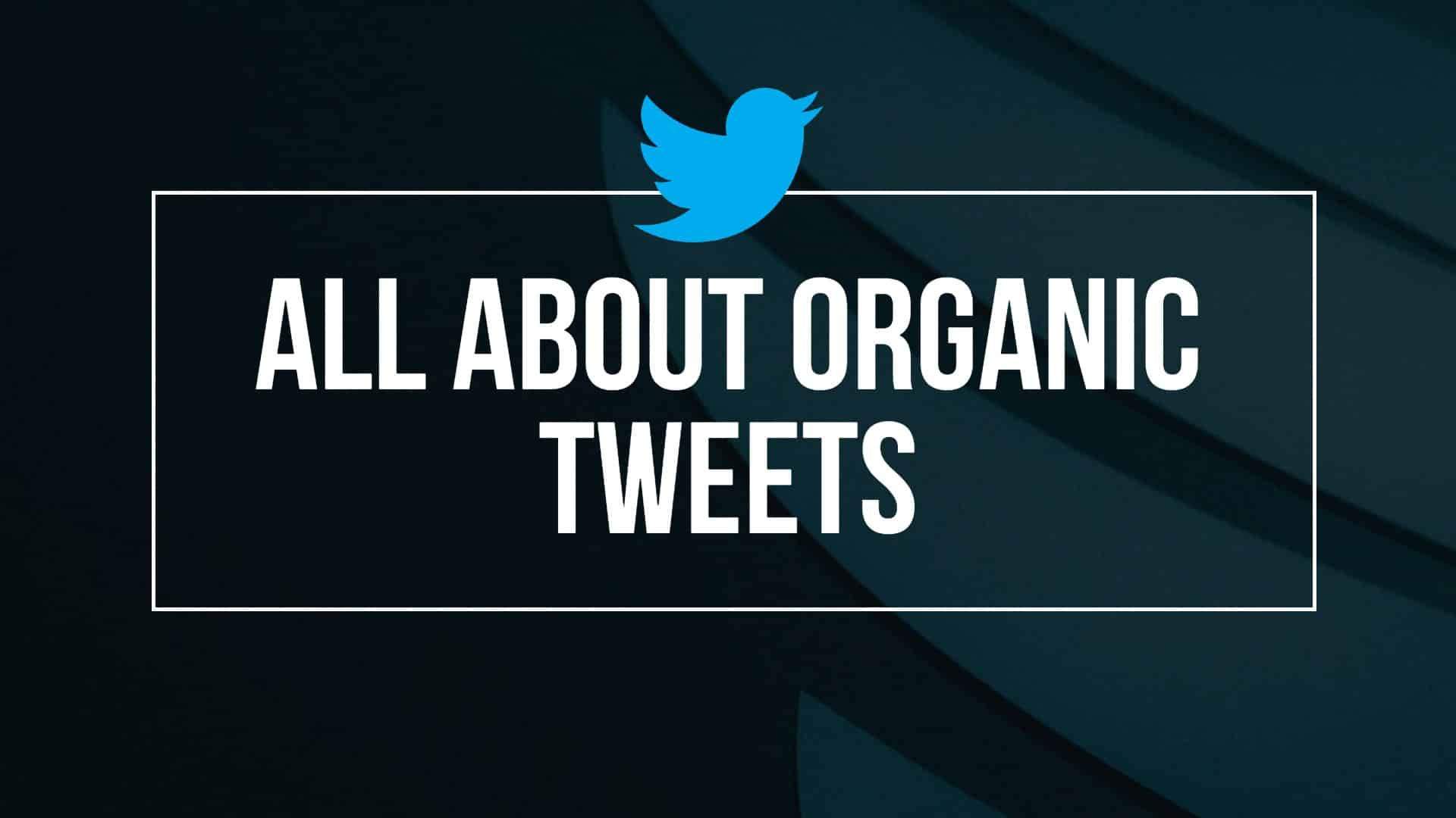 All About Making Organic Tweets